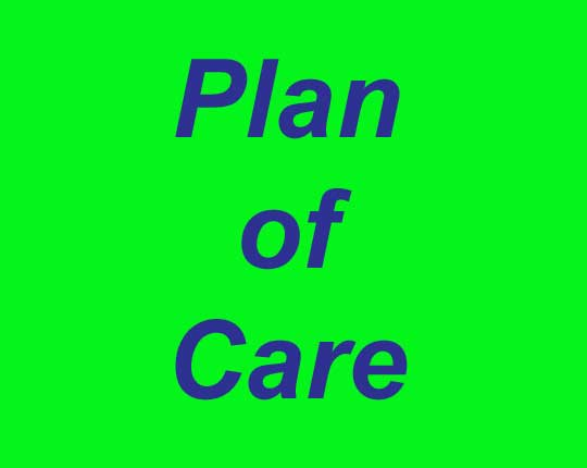 Physical Therapy Plan of Care